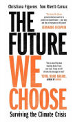 Book cover 'The Future we choose'